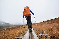 Female hiker walks along wooden planks in Tjäktjavagge on Kungsleden trail, Lappland, Sweden