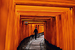 Fushimi Inari Shrine, Kyoto, Japan, 2007.<br />