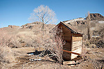 Five-holer outhouse at Martin Creek, Nev.