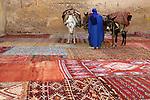 Carpet seller, Fes, Morocco