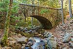 Jordan Stream and the Cobblestone Bridge in Acadia National Park, Maine, USA