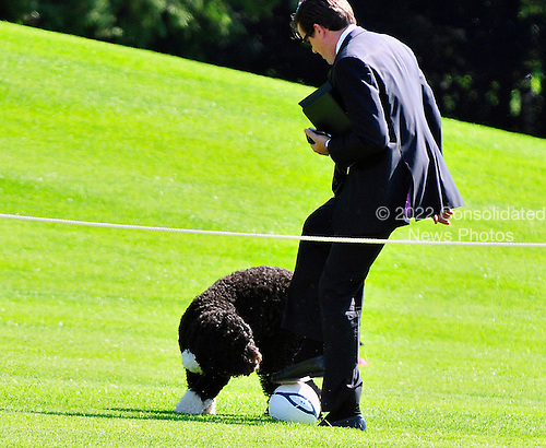 """Bo, the Obama family dog, plays Soccer with Alan Fitts, Deputy Director of Advance and Trip Director for the First Lady, on the South Lawn of the White House in Washington, D.C. prior to a """"Let's Move"""" event sponsored by first lady Michelle Obama on Thursday, October 6, 2011..Credit: Ron Sachs / CNP"""