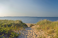 Path Through Dunes To Beach, New York, Long Island, East Hampton, Northwest Harbor Park