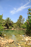 Ein Shokek, a spring in Beth Shean valley