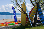 Idaho, Sandpoint. Surfboards leaning in a tree and colorful kayaks on the sandy shore of Lake Pend Oreille.