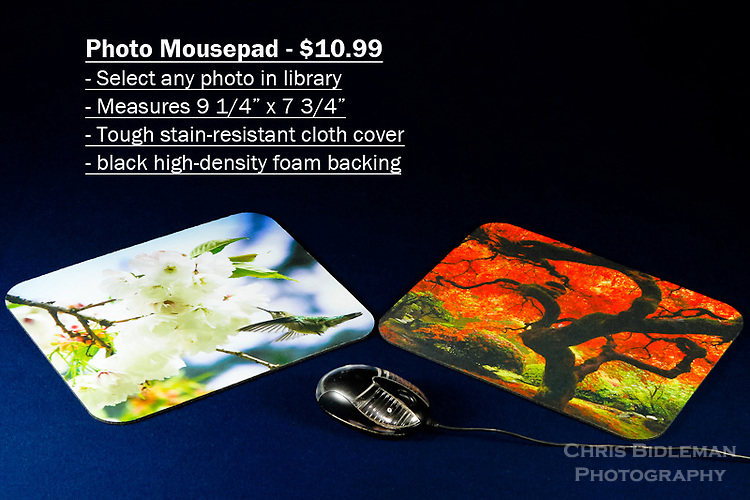 Photo Mousepad - order with any photo from the Chris Bidleman Photography collection.  Measure 9 1/4&quot; x 7 3/4&quot; in size.<br /> <br /> Create your own custom mousepad with any photo in Chris Bidleman Photography library.  Printed on a durable cloth cover, your custom mousepad adds an unique look to home or office.  The no-slip back keeps the pad in place, allowing for smooth mouse movement across the cover.  Makes a thoughtful office gift.<br /> <br /> To order, select your photo from the library, pick the &quot;buy&quot; button, and go to the &quot;products&quot; tab to select mousepad.