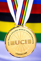 Picture by Alex Whitehead/SWpix.com - 02-06/03/2016 - Cycling - 2016 UCI Track Cycling World Championships - Lee Valley VeloPark, London, England - The Brief. UCI jersey, rainbow stripes.
