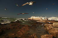 the oceanfront in Essouira, Morocco - Photograph by Owen Franken