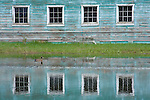 Windows of an old building reflected in the waters of a nearby pond. A duck swims across the turquoise water.