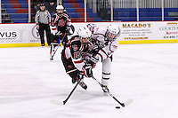 Liberty University D1 Women's Hockey team plays Davenport University on February 7, 2014. (Photo by Joel Coleman)