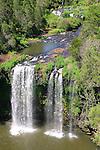 Dangar Falls, Dorrigo, NSW