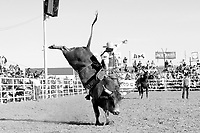 RODEO in Black and White