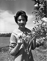 Alice O'Sullivan, Dublin Rose, Winner of Rose of Tralee at Trimlestown Gardens, Booterstown.20/06/1959