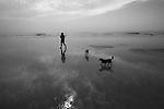 A woman walks her dogs at low tide in Fernandina Beach, Fla. July 22, 2010.