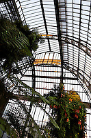Plant History Glasshouse (formerly the Australian Glasshouse), 1830s, Charles Rohault de Fleury, Jardin des Plantes, Museum National d'Histoire Naturelle, Paris, France. View from below, showing the glass and iron roof structure in the afternoon light.
