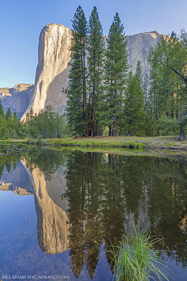 Morning Reflections, El Cap