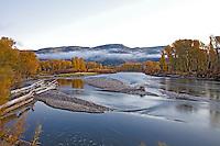 Fall Colors, Snake River, Ririe, Idaho