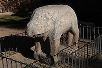 Verraco, Celtic statue of a boar, stone, Avila, Castile and Leon, Spain. The first known inhabitants of Avila, the Vettones, a Celtic tribe, arrived c.700 BC. Verracos, stone boars or bulls, appear across the West of the central Iberian plane and date from mid 4th-1st centuries BC. Photograph by Manuel Cohen