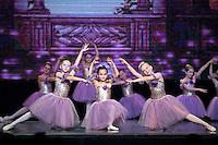 Sleeping Beauty - Little Fairies