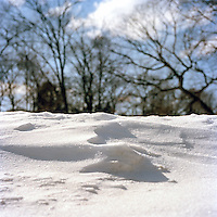 Yantacaw Brook Park Snow