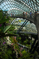 Tourists walk through the Cloud Forest in Gardens by the Bay, a popular relaxation destination for many local residents escaping the humid heat of Singapore. The Cloud Forest conservatory replicates the cool moist conditions found in tropical mountain regions between 1,000 metres and 3,000 metres above sea level, found in South-East Asia, Middle- and South America.<br /> Gardens by the Bay is an integral part of a strategy by the Singapore government to transform Singapore from a &quot;Garden City&quot; to a &quot;City in a Garden&quot;. The stated aim is to raise the quality of life by enhancing greenery and flora in the city. Photo by Suzanne Lee/Panos Pictures