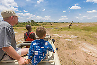 Young boy watches elephants from a safari vehicle in the Masai Mara, Kenya, East Africa