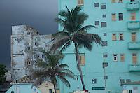 Cuba , l'Avana, il Malecon, palma e edifici cubani