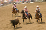 A judge watches as two cowboys team rope a steer, Jordan Valley Big Loop Rodeo, Ore..