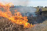 Burning off the grasses in an Agnew irrigation ditch, in preparation for growing season.