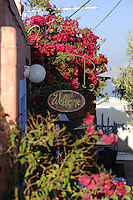 Beautiful garden of Santorini art shop with Welcome sign