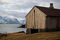 Old barn near coast, near Kvalnes, Lofoten Islands, Norway