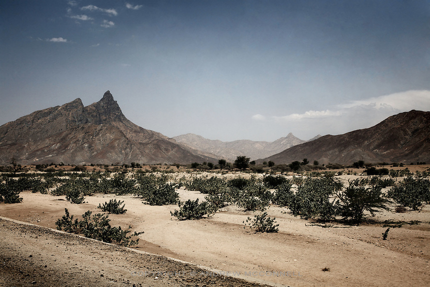 The arid landscape of western Eritrea, pictured on Saturday, Apr. 21, 2007..
