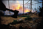 Israeli settlers burned this Palestinian farm at dawn in response to stone throwing. Near Khan Yunis, Gaza. November 1993