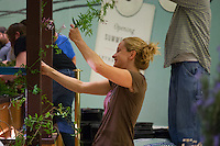 "Ute Smith works to artfully wrap a vine around a post at Orange Coast College's Ornamental Horticulture Club's in-progress installation at the 2012 South Coast Plaza Spring Garden Show in Costa Mesa, CA.  The theme for this year's show is ""healing gardens"", and the OCC team is installing a ""garden for the blind,"" which will be complete with a braille world globe and braille labels.  This picture was taken Tuesday April 25, 2012 at ~11pm, as the team was working frantically to meet their Thursday-morning deadline.  This image was taken at a high ISO using the ambient light in the dim mall, so it's noisier than my typical images (and thus I'd recommend against printing it large)."