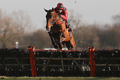 Nagpur ridden by Aidan Coleman in jumping action during the Sidney Banks Memorial Novices Hurdle - Horse Racing at Huntingdon Racecourse, Cambridgeshire - 23/02/12- MANDATORY CREDIT: Gavin Ellis/TGSPHOTO - Self billing applies where appropriate - 0845 094 6026 - contact@tgsphoto.co.uk - NO UNPAID USE.