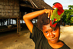 Parot bird on the head of a local girl at Hessessai Bay at PanaTinai (Panatinane)island in the Louisiade Archipelago in Milne Bay Province, Papua New Guinea.  The island has an area of 78 km2..The Louisiade Archipelago is a string of ten larger volcanic islands frequently fringed by coral reefs, and 90 smaller coral islands located 200 km southeast of New Guinea, stretching over more than 160 km and spread over an ocean area of 26,000 km? between the Solomon Sea to the north and the Coral Sea to the south. The aggregate land area of the islands is about 1,790 km? (690 square miles), with Vanatinai (formerly Sudest or Tagula as named by European claimants on Western maps) being the largest..Sideia Island and Basilaki Island lie closest to New Guinea, while Misima, Vanatinai, and Rossel islands lie further east..The archipelago is divided into the Local Level Government (LLG) areas Louisiade Rural (western part, with Misima), and Yaleyamba (western part, with Rossell and Tagula islands. The LLG areas are part of Samarai-Murua District district of Milne Bay. The seat of the Louisiade Rural LLG is Bwagaoia on Misima Island, the population center of the archipelago.PanaTinai (Panatinane) is an island in the Louisiade Archipelago in Milne Bay Province, Papua New Guinea. The island has an area of 78 km2..The Louisiade Archipelago is a string of ten larger volcanic islands frequently fringed by coral reefs, and 90 smaller coral islands located 200 km southeast of New Guinea, stretching over more than 160 km and spread over an ocean area of 26,000 km? between the Solomon Sea to the north and the Coral Sea to the south. The aggregate land area of the islands is about 1,790 km? (690 square miles), with Vanatinai (formerly Sudest or Tagula as named by European claimants on Western maps) being the largest..Sideia Island and Basilaki Island lie closest to New Guinea, while Misima, Vanatinai, and Rossel islands lie further east..The archipelago is divided into the Local Level Gove