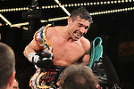 Mar 17; New York, NY, USA; Sergio Martinez celebrates his 11th round TKO over Matthew Macklin at the Theater at Madison Square Garden.
