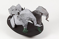 Origami elephant herd folded by Talo Kawasaki. Large elephant designed by Kunihiko Kasahara. Small elephants designed by Fumiaki Kawahata.