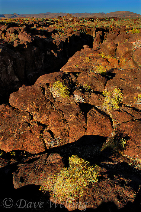 730850332 lava rocks and formations looking east over fossil falls blm protected lands inyo county california