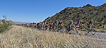 2011 Valley of the Sun - Stage 2  Road Race