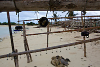 Normally these seaweed drying racks are full, because Typhoon Yolanda (Haiyan) washed most crops away the racks area empty.