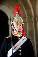 Horse mounted guards at Buckingham Palace.
