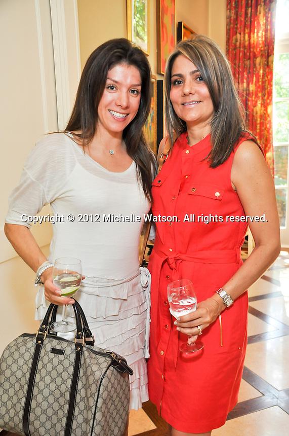 Latin Women's Initiative Membership Brunch