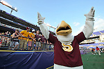 29 MAY 2011:  Sammy the Seagull, the mascot for Salisbury University cheers during the game against Tufts University during the Division III Men's Lacrosse Championship held at M+T Bank Stadium in Baltimore, MD.  Salisbury defeated Tufts 19-7 for the national title. Larry French/NCAA Photos