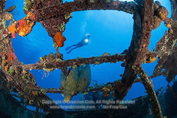 TR0637-D. Scuba diver (model released) soaring above the remains of the Doc Paulson sunken ship offshore the western side of Grand Cayman Island. Invertebrate marine life (especially colorful sponges as shown here inside the wheelhouse) now covers much of the wreck, and fish are attracted to the artificial reef. It is a fun, easy dive site in shallow water. Cayman Islands, Caribbean Sea.<br /> Photo Copyright &copy; Brandon Cole. All rights reserved worldwide.  www.brandoncole.com