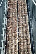New York, NY. October 22nd, 1978. Participants of the 9th New York Marathon crossing the Verrazano-Narrows Bridge.