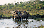 Asia, Nepal, Chitwan National Park. Elephant back safari
