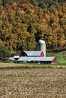 Scenic farm in rural upstate New York, Homer, NY. USA
