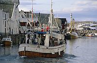 Europe/Norvège/Iles Lofoten/Hennigsvaer: le port de pèche au skréi cabillaud