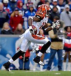 4 November 2007: Cincinnati Bengals wide receiver Glenn Holt in action against the Buffalo Bills at Ralph Wilson Stadium in Orchard Park, NY. The Bills defeated the Bengals 33-21 in front of a sellout crowd of 70,745...Mandatory Photo Credit: Ed Wolfstein Photo